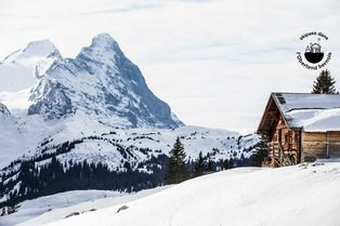 Skipass dans l'Oberland bernois : Jungfrau Region