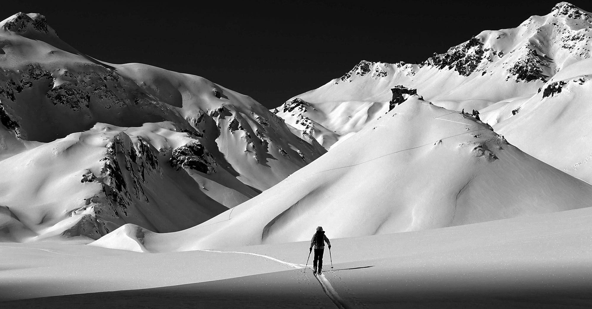 Skis Movement 2016