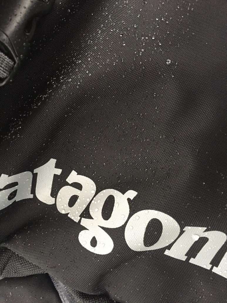 Patagonia Snowdrifter 20L