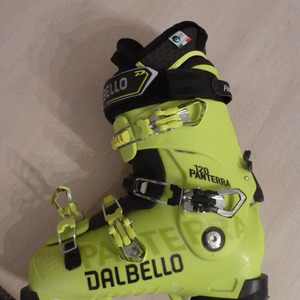 Test Dalbello Panterra 120