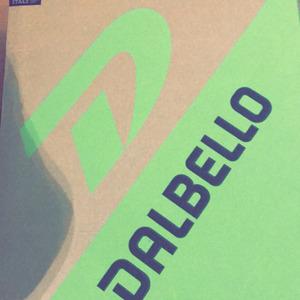 Test Dalbello Lupo AX 120