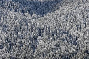 Neige et soleil de début décembre