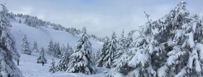 Top 5 des trucs cools à Monts Jura