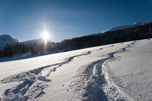 Alerte secret spot en Savoie !