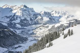 Lucerne : l'étoile montante des neiges
