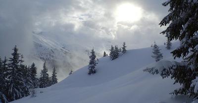 Point Neige #18 : L'hiver n'a pas dit son dernier mot