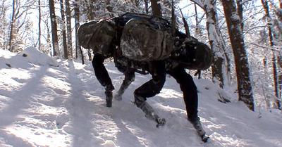 Une start-up développe un robot chien d'avalanche