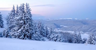 FLASH NEIGE :  Après l'Est ... jusqu'à 60 cm dans les Pyrénées !