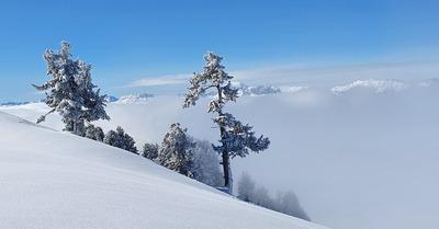 Ski Porn (du pauvre)