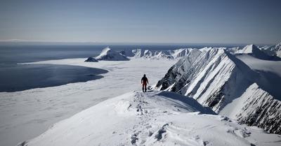 Du ski au pays des ours blancs