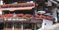 Hôtel Chalet Saint Georges