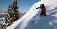 Ecole de ski et freeride