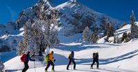 Montagne Sensation - Office de guides