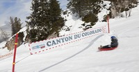 Colorado Luge