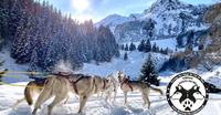 Team des loups du Val de They