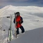 snow_badger
