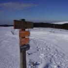 skiskate